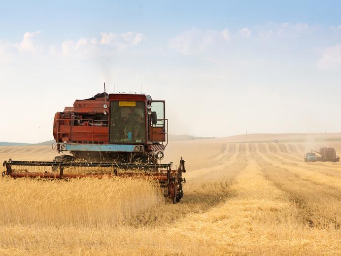 Особенности банкротства сельхозпредприятий